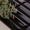 美濃焼タイル ボーダータイル ブラック (AL254-R30)